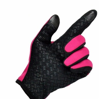 Outdoor Sport Gloves Touch Screen Windproof Winter Windstopper Waterproof Gloves (Rose)