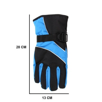 2016 High Quality Winter outdoor sport Mountain Skiing Gloves windproof waterproof warm snowboard Below Zero ski Cycling Gloves(sapphire blue)